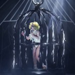 Lady Gaga Birdcage