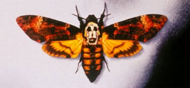 Illuminati-symbols-The-Silence-of-the-Lambs-butterfly-closeup